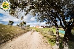Ocius-Park-Eventos-de-Empresa-Madrid-Colmenar-Viejo-Aire-Libre