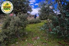 Gymkhana-Infantil-Ruta-Ambiental-Naturaleza_Livingstone-OciusPark-Madrid-1