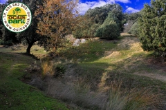 Gymkhana-Infantil-Ruta-Ambiental-Naturaleza_Livingstone-OciusPark-Madrid-9